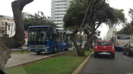 Protransporte retiró a chofer de bus azul que invadió ciclovía