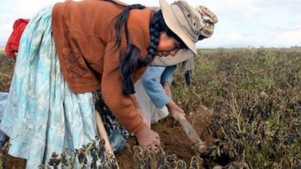 OIT: Reducir la pobreza hasta 2030 cuesta 10 billones de dólares