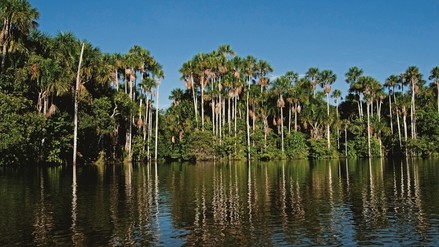 SERNANP refuerza seguridad en Reserva Nacional de Tambopata