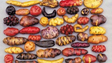 Día de la Papa: Conoce más del alimento preferido de las familias peruanas