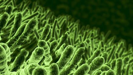 ¿Por qué las bacterias se vuelven resistentes a los antibióticos?