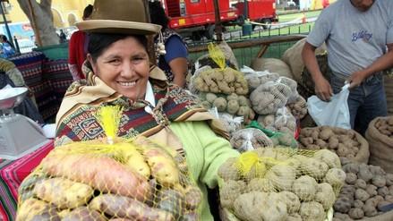 La región Puno tiene el 15% de la producción de papa a nivel nacional