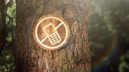 Desintoxicación Digital: ¿Qué es y cómo puede ayudar a tus hijos?