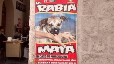 Aumentan a 22 los casos de rabia canina