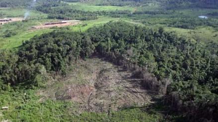 FAO: Reparto desigual de recursos naturales amenaza con agravar conflictos