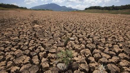 Cambio climático tendrá impacto mayor en Latinoamérica, advierten