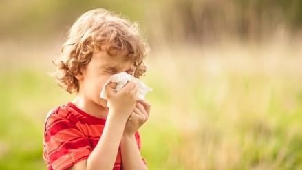 Alergias: ¿Por qué mi hijo es alérgico a todo?