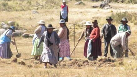 Yunguyo: denuncian invasión de bolivianos a territorio puneño