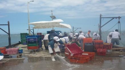 Pescadores artesanales de Sechura acatan paro de 48 horas
