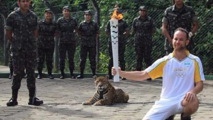 ¿Por qué Brasil mató a jaguar en ceremonia del paso de la antorcha olímpica?