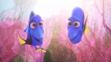 Éxito de 'Buscando a Dory' pondría en peligro al pez cirujano azul