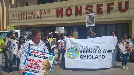 Pobladores protestan en municipio de Monsefú por muerte masiva de canes