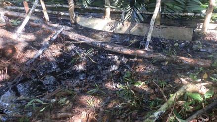 Yurimaguas: derrame de petróleo podría llegar al río Marañón