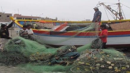 Más de 100 toneladas de pescado se dejaron de extraer por oleajes anómalos