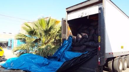 Con guía falsa, pretendían transportar más de 30 toneladas de carbón de algarrobo
