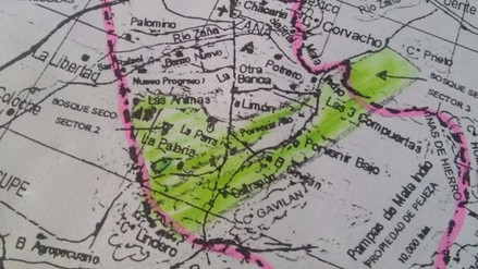 Desconocidos siguen depredando el bosque seco de La Otra Banda en Zaña
