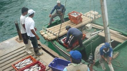 Piura: pescadores descartan acatar otro paro en Sechura