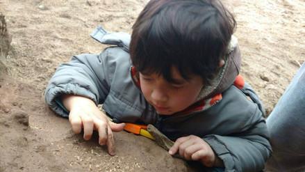 Niño de 4 años encuentra restos fósiles de al menos medio millón de años