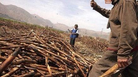 Trabajadores azucareros del país alistan plenario en Chiclayo