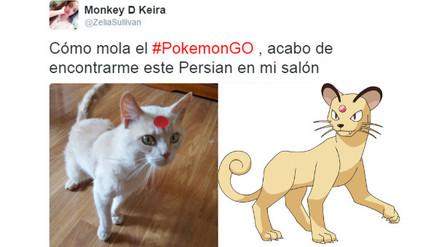 Pokémon Go: usuarios comparten sus búsquedas fallidas de pokemones