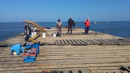 Se requiere 8 millones de soles para mejora integral del muelle Puerto Eten