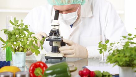 ¿Podrías reconocer si estás comiendo un alimento transgénico?
