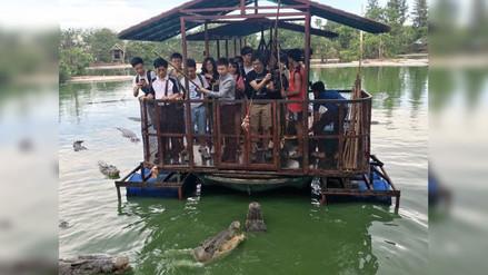 Twitter: cierran parque de cocodrilos en Tailandia por esta foto
