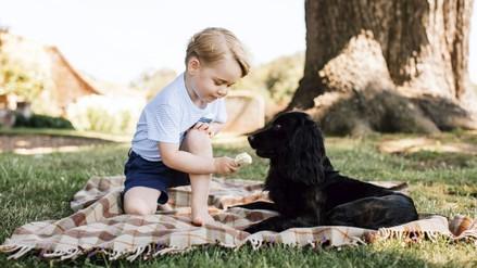 El príncipe Jorge de Inglaterra celebra sus 3 años con nuevas fotos