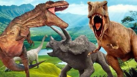 Bolivia: hallan la gigantesca y rara huella de un dinosaurio