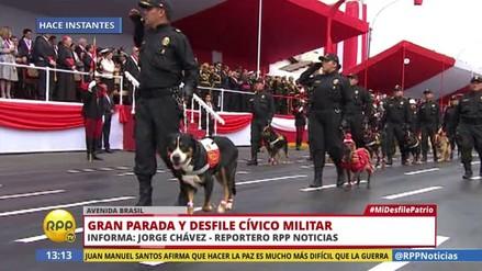 'Lorenzo', la mascota de PPK, encabezó regimiento de la Policía Canina