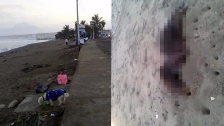 Trujillo: Contaminación en balneario de Huanchaco