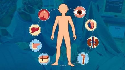 Infografía | Todo lo que debes saber sobre la donación y trasplante de órganos