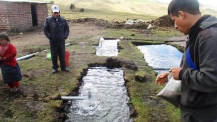 Mueren cientos de truchas en piscigranja de Colpla en Huay Huay