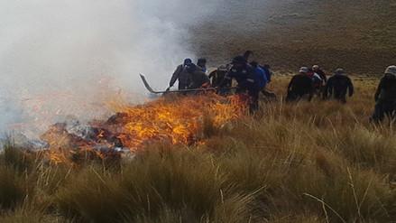 Incendio forestal afecta 100 hectáreas de plantaciones en Chincheros