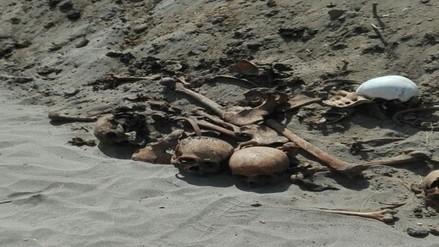 Hallan restos óseos en zona de Cherrepe