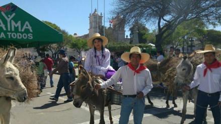 Entrada de Ccapo por aniversario de Arequipa se realizará el 14 de agosto