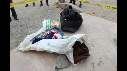 Chimbote: hallan restos óseos seccionados en Villa Los Jardines