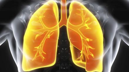 ¿En qué se parecen nuestros pulmones a una cancha de tenis?
