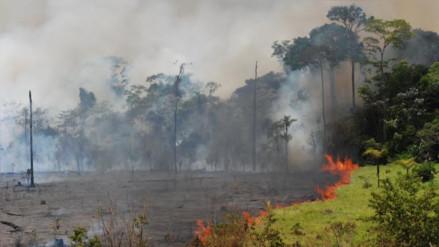 Sequía e incendios forestales podrían ser los más severos de la década