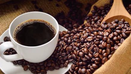 Día del café peruano: Conoce más de este grano aromático en cifras