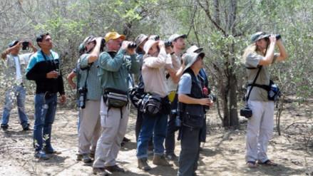 Aviturismo mundial apunta hacia lugares naturales de Lambayeque