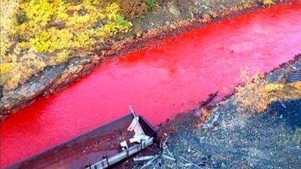 Por qué este río de Rusia se tiñó de rojo