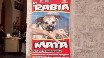 Detectan rabia canina en cachorro comprado en feria El Altiplano