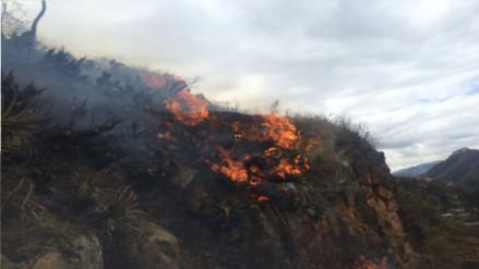 Abancay: incendio forestal extingue parte del Santuario Nacional de Ampay