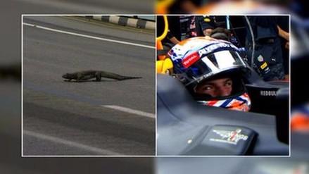 Max Verstappen se topó con