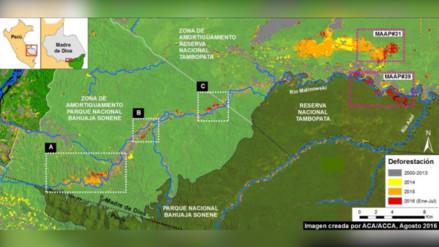 Tres regiones de la Amazonía son sacudidas por la deforestación