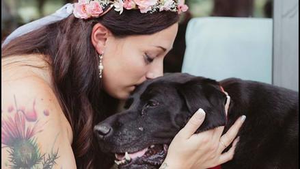 Facebook: perro con tumor cerebral muere después de asistir a la boda de su dueña