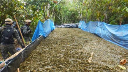 Vraem: destruyen laboratorios de producción de alcaloide de cocaína