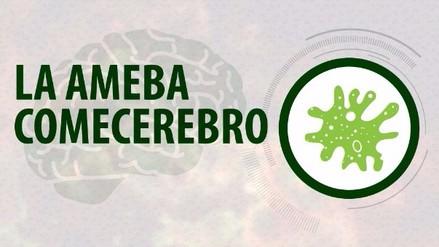 El ataque de una ameba 'comecerebros' puede confundirse con una gripe