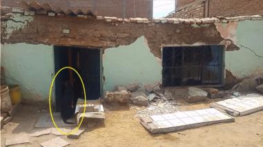 Video: Perro mira con tristeza colapso de la vivienda de sus dueños